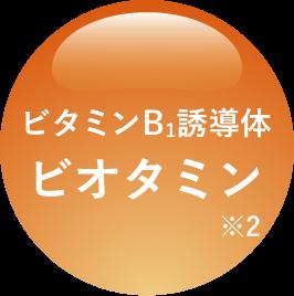 ビタミンB1誘導体ビオタミン※2